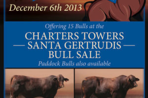 Charters Towers Sale December 2013 | Gyranda