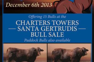 Charters Towers Sale December 2013 | Gyranda